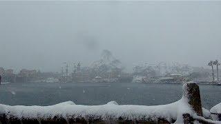 Snowstorm! at Tokyo Disneysea