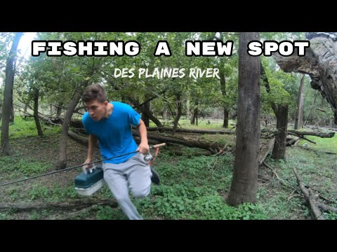 FISHING Des Plaines River Dam (SUPRISING)