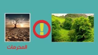 ما الأشهر الحرم وما منزلتها في الاسلام؟ أخطاء وبدع   من مجموعة زاد   YouTube