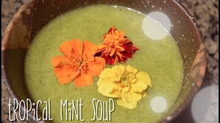 Tropical Mint Soup : Vegan Recipe : Cold Appetizer : Gluten Free Recipe : Seonkyoung Longest