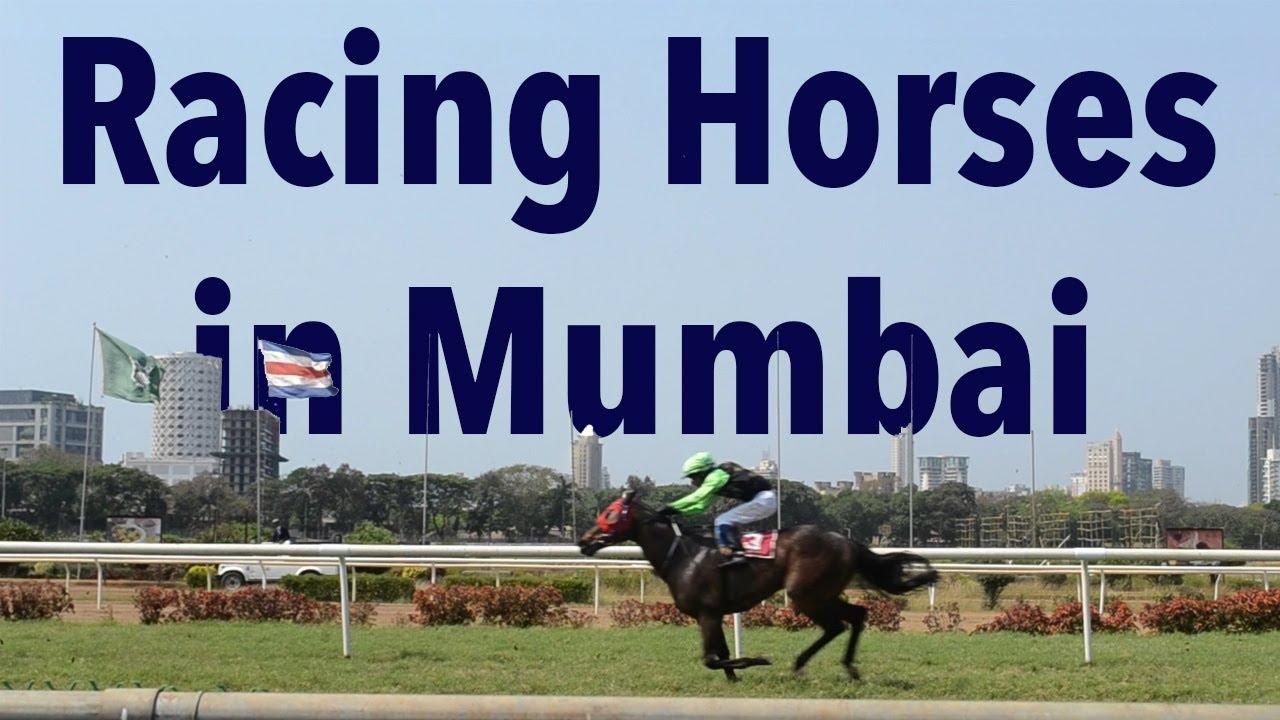 Horse race betting in mumbai sports betting on