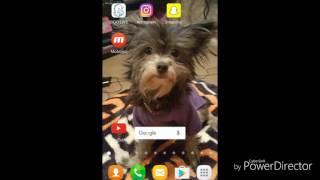 Video How to get unbanned from BIGO live download MP3, 3GP, MP4, WEBM, AVI, FLV September 2017