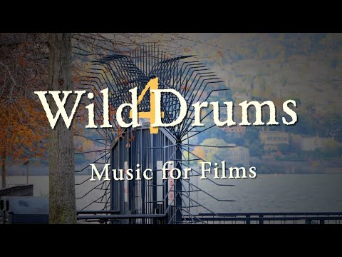 Wild Drums 4 (Music For Films)