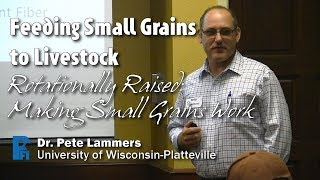 Feeding Small Grains to Livestock - Pete Lammers