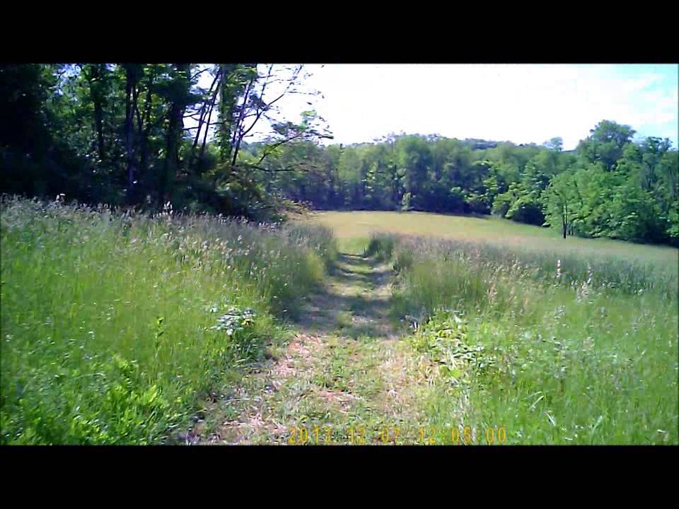4 Wheeler Riding Woods Field Mud Youtube