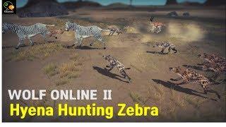 Hyena Hunting Zebra - Wolf Online 2