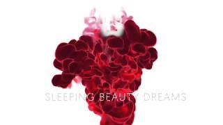 Сны спящей красавицы: директор и хореограф Эдвард Клюг, с участием Дианы Вишневой