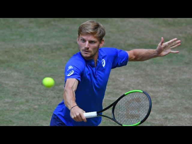 Beautiful David Goffin Shots & Match Point v Berrettini | Halle 2019