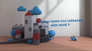 Mold Inspection & Mold Removal Mammoth AZ (520) 214-7214