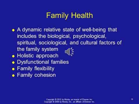 Chapter 027 Family Development And Family Nursing Assessment