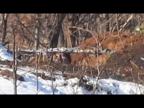 Жестокие кадры: Снайпер уничтожил карателя ВСУ на Донбассе