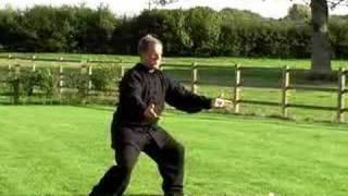 Bob Fermor Performing Yang Tai Chi Chuan Long Form