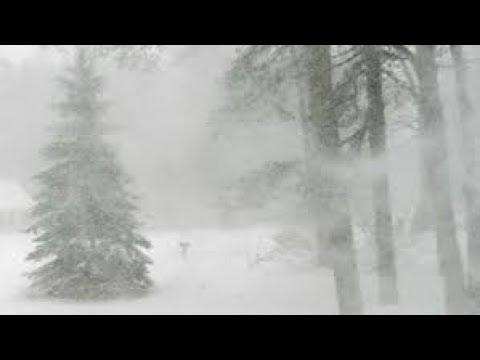 Prirodni Radio - Blizzard