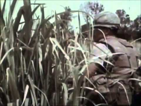 USMC Scout Sniper (documentary)