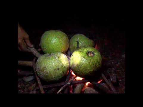 Jamaican culture food