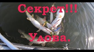 СЕКРЕТ Улова Как поймать много щуки Ловля щуки на спиннинг с лодки Рыбалка на щуку с лодки
