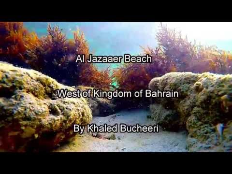 Al Jazaaer Beach, West of Kingdom of Bahrain