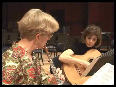 JoAnn Falletta Plays /  Virginia Symphony Orchestra