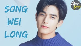 All About SONG WEI LONG | TOP 6 Facts about SONG WEI LONG 宋威龙