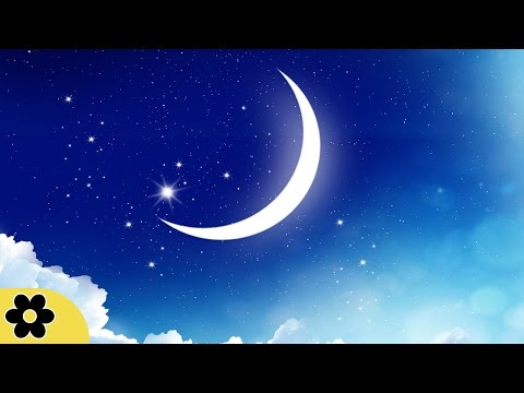 8 Hour Relaxing Sleep Music, Calm Music, Soft Music, Instrumental Music, Sleep Meditation, ✿3169C