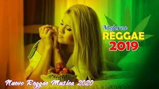 Mejor Música Reggae 2020 - Nuevo Exitos De La Música Reggae 2020 - Nuevo Reggae Em Inglés 2020