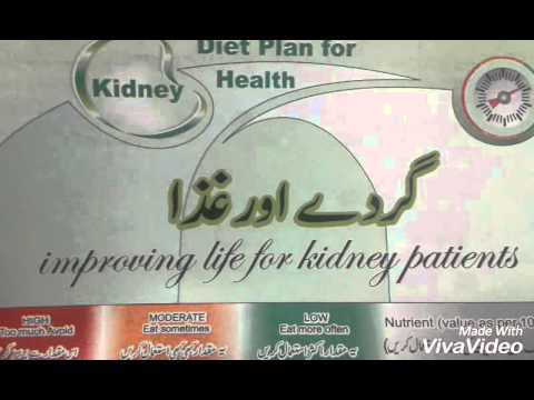 What are the best foods for kidney disease patients?
