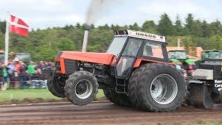 Ursus 1614 | Tractor Pulling Hjørring