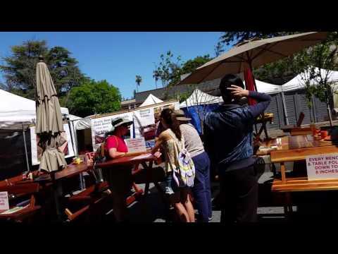 Mountain View Arts Faire 20160430 144236