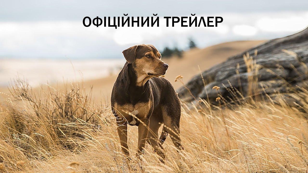 Шлях додому. Офіційний трейлер 2 (український)