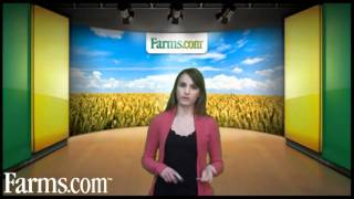 Farms.com Grain Market Price Overview and Report