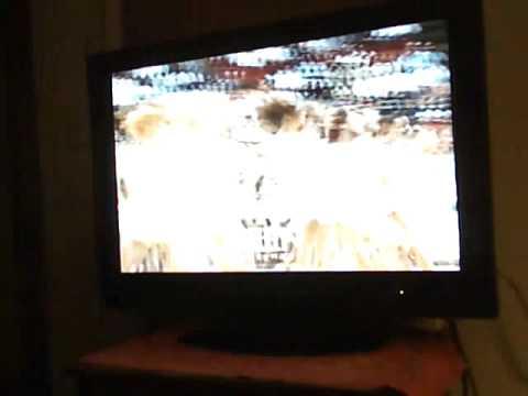 NBA Live 99 Halftime Show (ATLANTIC Division)