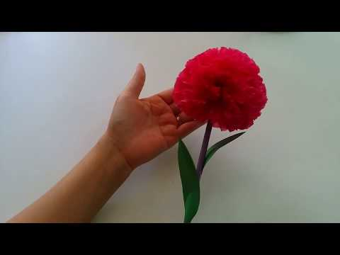 Awesome Tissue Paper Pom-Pom flower