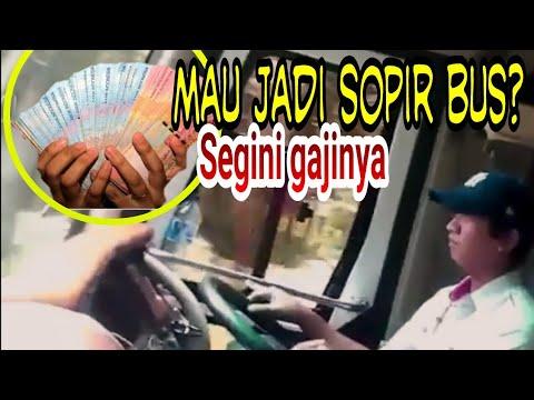 Inilah besaran gaji sopir atau crew bus (7 sistem gaji sopir atau crew bus) Mp3