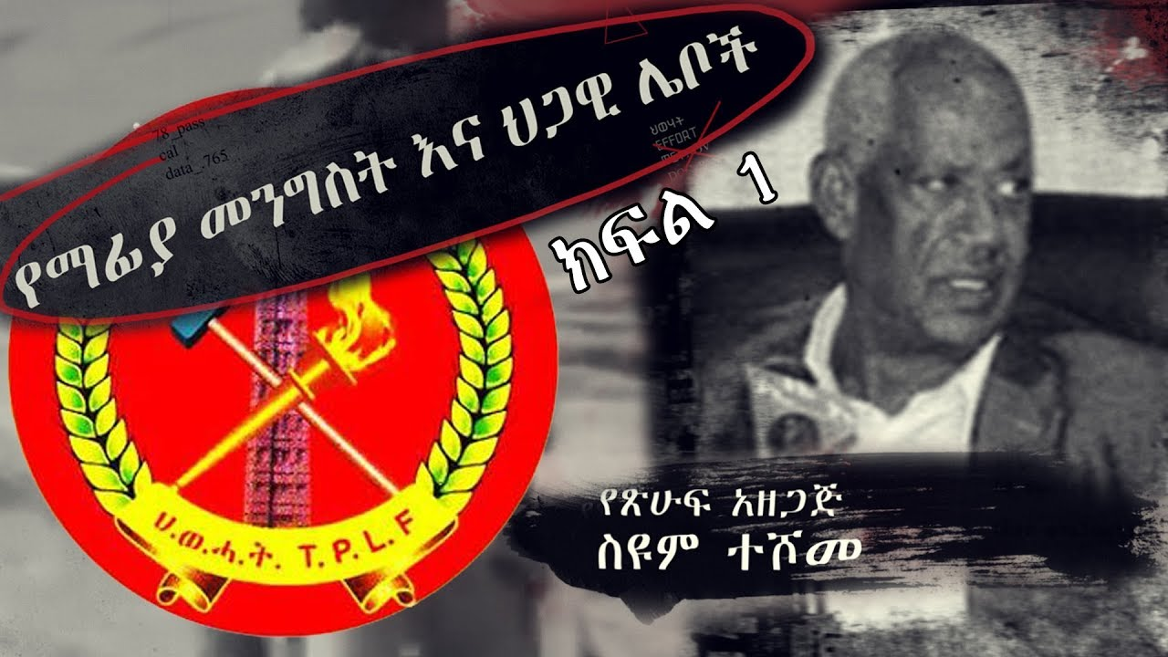 The Mafia government and legal thieves by Seyoum Teshome