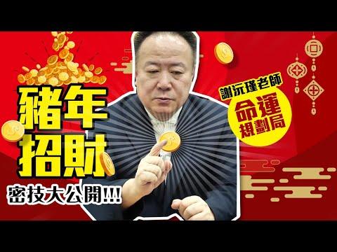【命運規劃局】2019豬年招財密技大公開- 謝沅瑾老師