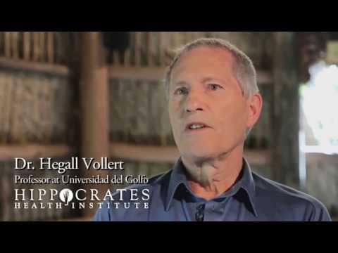 Hippocrates Health Institute interviews Dr. Hegall Vollert on Futural Therapy