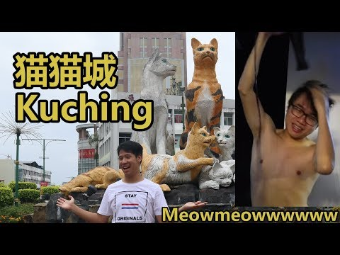 去猫城找猫 KUCHING THE ANCIENT CITY OF CATS meowmeowmeowwwwwwwwWWWWW