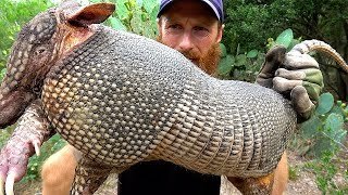 ARMADILLO Hunt with CATCH NET, Foraging the Wild for TreeBerries | ASMR (Silent)