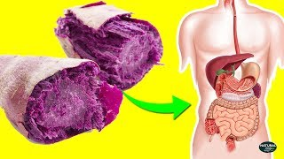 6 Reasons Why Purple Yam Is The Healthiest Food on Earth!