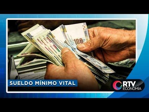 Sueldo Mínimo Vital: ¿Cuánto Debe Ser El Sueldo Mínimo Vital En El Perú?| RTV Economía