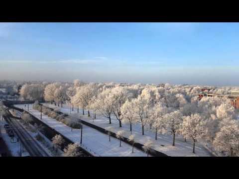 Bremen Snow