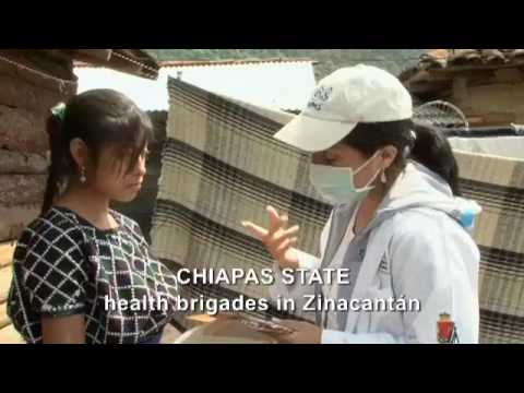 2009 H1N1 Influenza Pandemic: Mexico