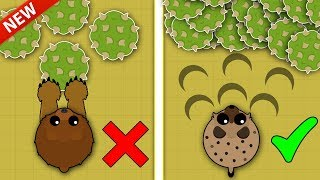 MOPE.IO / NEW BEST WAY TO FARM XP & LEVEL UP FAST! / NEW XP GLITCH & XP BEST METHODS!