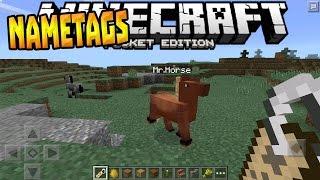 Nametags Horses More