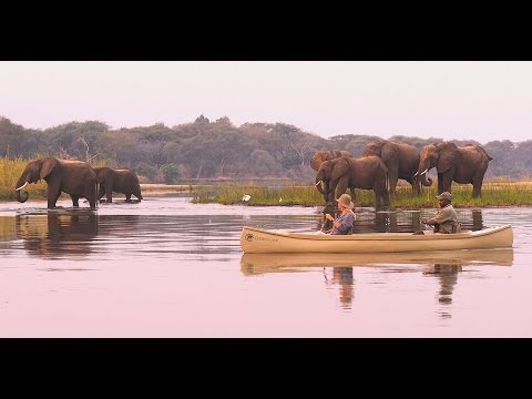 Chiawa Camp, Zambezi National Park, Zambia - Unravel Travel TV