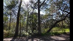 116 Lakeview Trail Melrose, Fl Is An Attractive 2.18 Acre Lot Priced At Just $70,000! - Mls373474