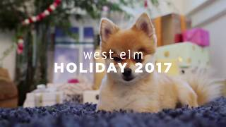 Holiday 2017: On Set with Quincy thumbnail