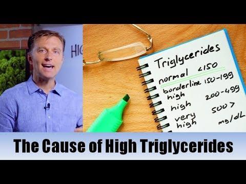 The True Cause of High Triglycerides