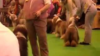 Kayley Crufts 2007