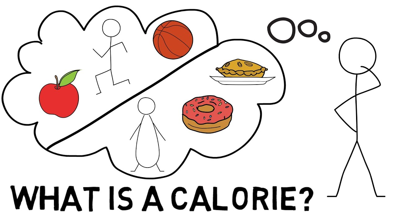 What is a Calorie  YouTube